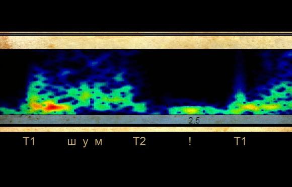 Т1 - первый тон Т2 - второй тон шум - систолический шум ! - пока секрет. Очевидно, что очень низкочастотный звук.